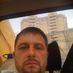 Сергей, 42 года, Тула