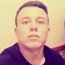 Тимур, 25 лет, Киров