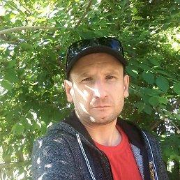 владимир, 40 лет, Николаев
