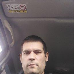 Юрий, 44 года, Курск