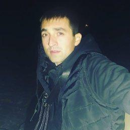 Саша, 25 лет, Красноармейск