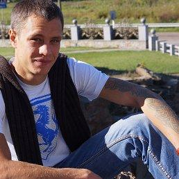 Vladimir, 31 год, Винница