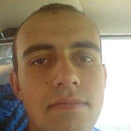 Дмитрий, 44 года, Краснодон