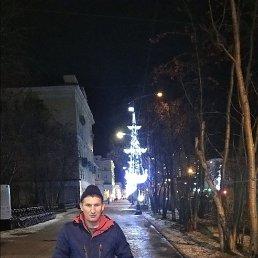 ARTEM, 36 лет, Мурманск