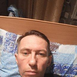 Алексей, 40 лет, Владивосток