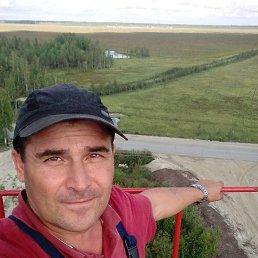 Николай, 54 года, Йошкар-Ола