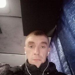 Денис, 33 года, Борисовка
