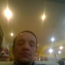 Сергей, 45 лет, Сертолово