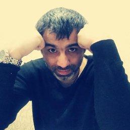 Рома, 39 лет, Электросталь