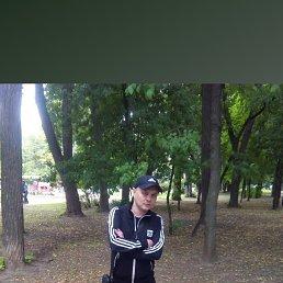 Паша, 33 года, Рязань