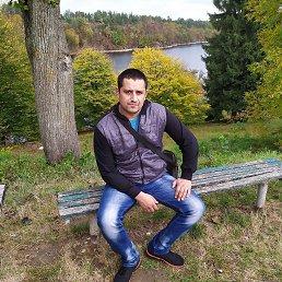 Вова, 38 лет, Дубно