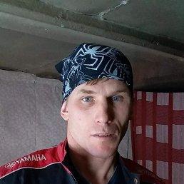 Алекс, 36 лет, Апрелевка