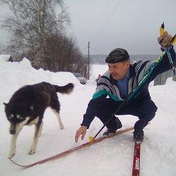 Александр, Пермь, 55 лет