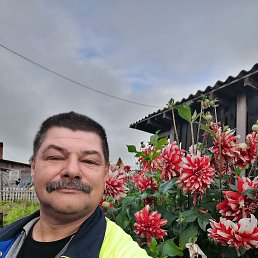 Андрей, 52 года, Малая Вишера
