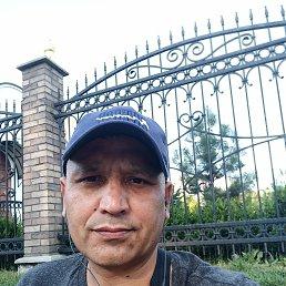 Фархад, 44 года, Ивангород