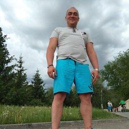 Дмитрий, 36 лет, Курган