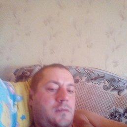 Александр, 36 лет, Нижний Новгород