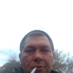 Евгений, 34 года, Москва