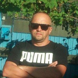 Ник, 40 лет, Торжок