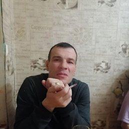 Михаил, 41 год, Киров