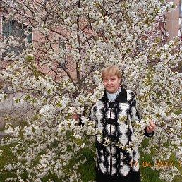 Светлана, 61 год, Кировоград