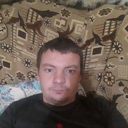 Вова, 31 год, Волгоград