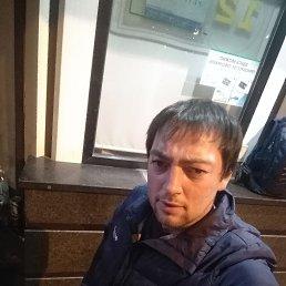 Женя, 30 лет, Вологда