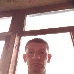 Александр, 43 года, Пермь