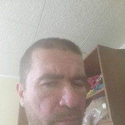 Тимофей, 43 года, Москва