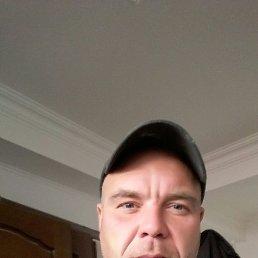 Костя, 39 лет, Сочи