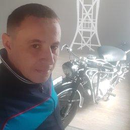 Михаил, 37 лет, Красноярск