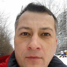 Михаил, 44 года, Рошаль