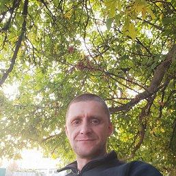 Денис, 41 год, Чугуев
