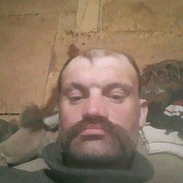 Алексей, 36 лет, Ивангород
