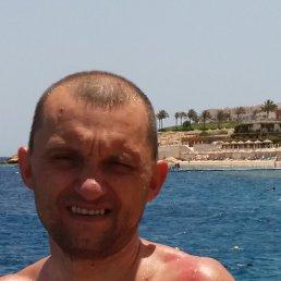 Александр, 39 лет, Винница
