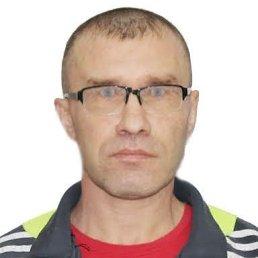 Сергей, 44 года, Новогорный