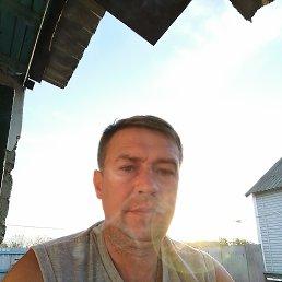 Вячеслав, 44 года, Льгов
