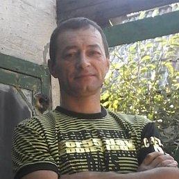 Василий, 53 года, Кировск