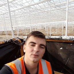 Кирилл, 25 лет, Мичуринск