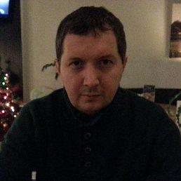 Vsevolod, 42 года, Москва