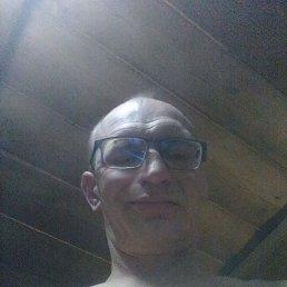 Виктор, 36 лет, Нижний Новгород