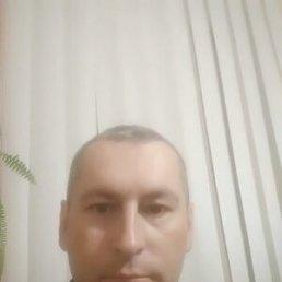 Шон, 39 лет, Гусятин