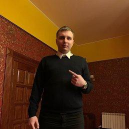 Антон, 29 лет, Вологда