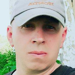 Vasil, 49 лет, Гребенка
