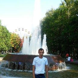 Владимир, 32 года, Новомосковск