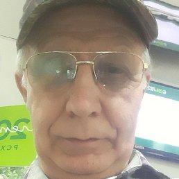 Николай, 58 лет, Тула