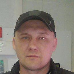 Алексей, Кемерово, 43 года