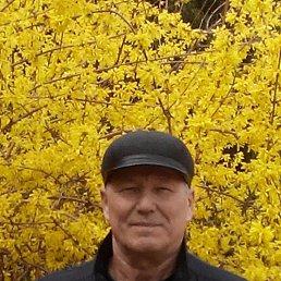 Валерий, 64 года, Йошкар-Ола