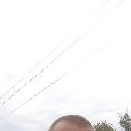 Михаил, 37 лет, Ростов-на-Дону