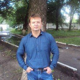 сергей, 38 лет, Ульяновск